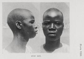 Plate_VIII_N_W_Thomas_Anthropological_Report_on_Sierra_Leone_Susu_Boy_Momo_Samura_re-entanglements.net_